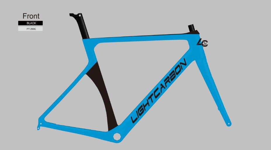 carbon road frame customized painting